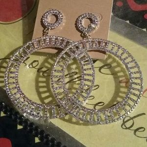 Natasha Earrings NWOT